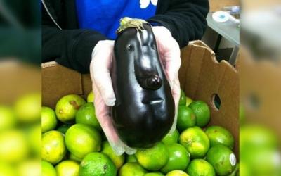 Ожившие овощи и фрукты: 40 забавных снимков