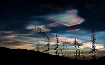 Удивительные природные явления, в существование которых трудно поверить