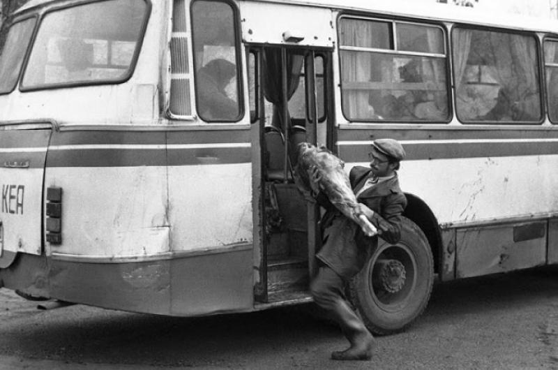 """Наши Автобусы №1 - ЛАЗ-695Н """"Наташа"""""""
